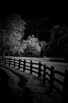 Country roads always seem haunted at night.