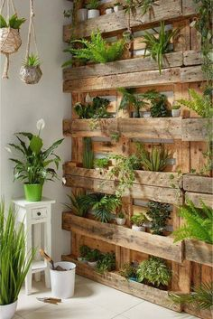 If you are looking for Diy Projects Pallet Garden Design Ideas, You come to the right place. Below are the Diy Projects Pallet Garden Design Ideas. House Plants Decor, Plant Decor, Wall Of Plants, Hanging Plants, Plant Art, Building A Fence, Walled Garden, Concrete Pots, Concrete Garden