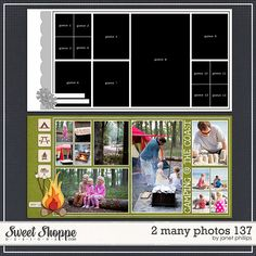 2 Many Photos 137 by Janet Phillips at Sweet Shoppe Designs.com