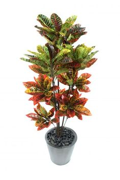 Buy Artificial 4ft Croton Plant - Artificial Silk Plant and Tree Range Other Foliage Trees from Artplants.co.uk