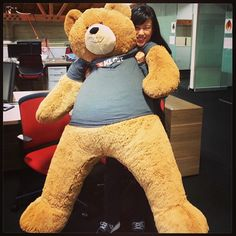 """""""Our newest employee. #kloutbear"""" --via @pboody"""