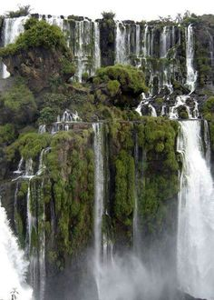 Iguacu Falls, Argentina: so humid that butterflies hung on your skin to sip the salty 'nectar' from your pores.