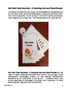 "A nice addition to ESY or summer autism programs. ""My Calm Tools Keychain: A Teaching Tool and Visual Prompt"" can be used to teach, practice and eventually prompt the younger, more behaviorally challenged student to use positive replacement behaviors as an alternative to acting out. 2.00"
