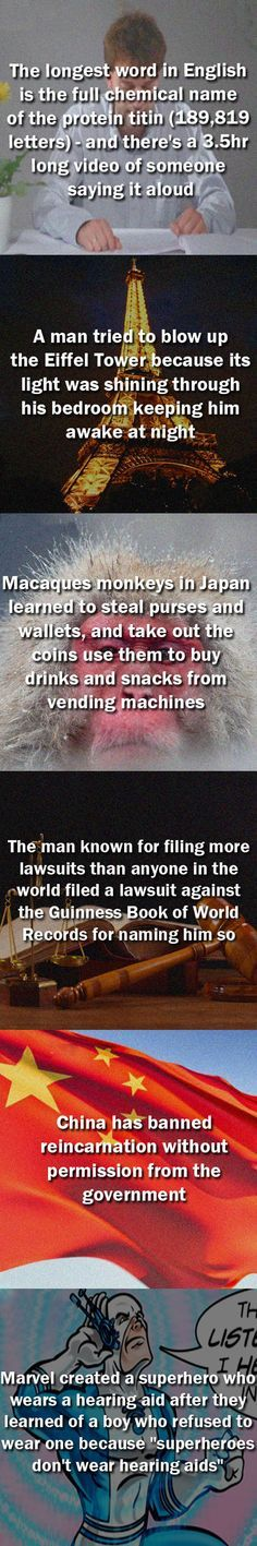 Ten random and interesting facts  // funny pictures - funny photos - funny images - funny pics - funny quotes - #lol #humor #funnypictures