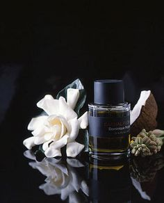 http://www.cindydiprima.com/ Perfume still life photography