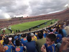 @ estadio universitario by ROOB