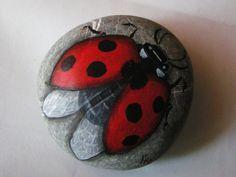 Coccinella portafortuna su sasso...great painted ladybug!