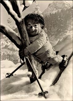 Skiing is fun, but tree-hugging is better.