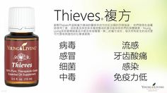 Young Living Thieves 盗賊 https://www.youngliving.com/signup/?isoCountryCode=US&sponsorid=1704613&enrollerid=1704613
