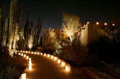 las noches de las luminarias @ desert botanical garden