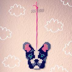 Hama dog, beads, hund, perleplade. By Sara Seir