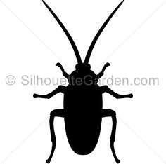 stock image of illustration of a cockroach silhouette on white rh pinterest com cockroach images clip art cartoon cockroach clipart