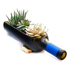 Wine Bottle Planter-  cool!
