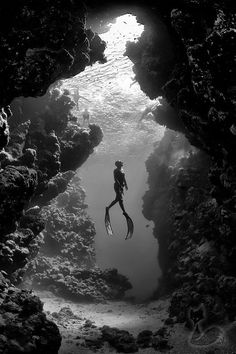 Freediving in Ras Mohammed National Park, near Sharm el-Sheikh. Photograph by Jacques de Vos. black and white photograph