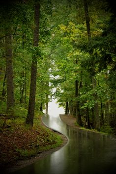 Cades Cove after a rain. Just breathtaking.