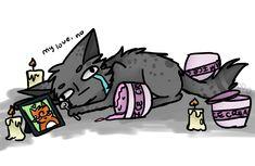Mistakes by diddlydarndunkaccino on DeviantArt Warrior Cats Funny, Warrior Cats Comics, Warrior Cat Memes, Warrior Cats Series, Warrior Cats Books, Warrior Cats Fan Art, Cat Comics, Warriors Memes, Love Warriors