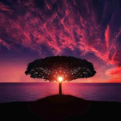  How are you spending your weekend?  incredible right?    #discoverglobe #worldshotz #vscoexpo #ourplanetdaily #roamtheplanet #hypebeast #earthfocus #welltravelled #explorergator #featuremeinstagood #vsco_mood #vscoward #vscophile #exploretocreate #vsco_hub #viscovisuals #vscocam #canonbringit #bestvacations #epic_captures #bestworldshot_ig #worldtravelbound #beauitfuldestinations #awesomeearth #pro_ig #igglobal #ig_exquisite #fantastic_earth