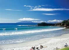 MATAKANA AREA BEACH - I repinned this image because I thought it was amazing. I'd be at this beach every day if it looked like this, tide is, blue skies and sunshine.  Paradise at its best! Tawharanui by Auckland Tourism Events & Economic Development, via Flickr.