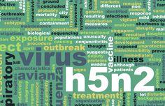Signs and Symptoms of Bird Flu in Birds | eHow UK