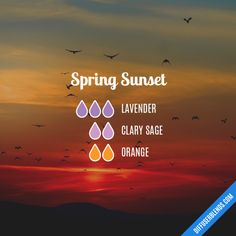 Spring Sunset - Essential Oil Diffuser Blend