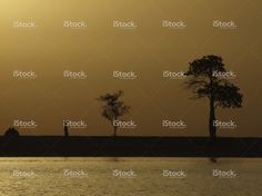 African landscape at sunset stock photo 58785356 - iStock - iStock ES