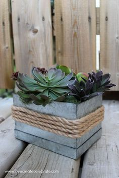 PLANTERS: Just a few simple items turn this little galvanized box into a rustic and industrial succulent planter! Succulent Centerpieces, Succulent Terrarium, Cacti And Succulents, Terrariums, Centerpiece Ideas, Garden Art, Garden Plants, Indoor Plants, House Plants