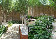 Jamie Dunstan ::: Garden Designer ::: RHS Chelsea Flower Show 2011 Gold Medal Winner & Best Urban Garden