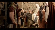 Day 7 - Palm Sunday - Jesus rides in triumph into Jerusalem. The multitudes greet Him with shouts of Hosanna to the Son of David. Life Of Jesus Christ, Jesus Lives, Mormon Beliefs, Jerusalem Bible, Triumphal Entry, Mormon Messages, Son Of David, New Bible, Palm Sunday