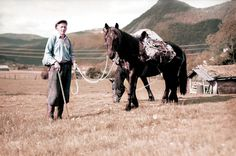 Vintage photos | spending Easter with the lads in 1906 | Norway Norway Facts, Vintage Photos, Transportation, Horses, Landscape, Animals, Easter, Animais, Animales