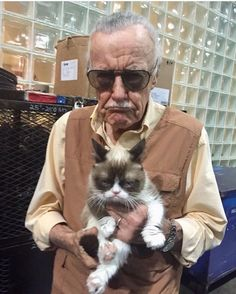 RIP Stan lee you changed my life forever and RIP grumpy cat Marvel Comics, Meme Comics, Marvel Funny, Marvel Memes, Dc Memes, Memes Humor, Funny Memes, Funny Pranks, Hilarious