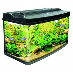 In Original Box Numerous In Variety For All Types Of Aquariums. Used Algarde Syphoning Set