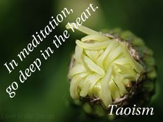 In meditation, go deep in the heart.  In dealing with others, be gentle and kind.  In speech, be true.  In ruling, be just.  In business, be competent.  In action, watch the timing. Taoism Source:http://www.katinkahesselink.net/other/tao-te-ching-quotes.html  Photo by: Love is the Secret