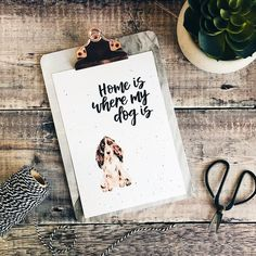 Home Is Where My Dog Is Cocker Spaniel Print Cocker Spaniel Cocker Spaniel, Watercolor Print, Dog Breeds, Things To Think About, Colours, Lettering, Pop, Prints, How To Make