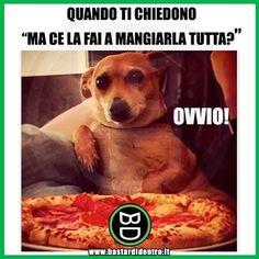 """Mi piace"": 54.3 mila, commenti: 246 - BastardiDentro (@bastardidentro) su Instagram: ""Fame da #cani #bastardidentro"""
