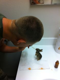 He bottle fed them four times a day for two months. | Four Tiny Rabbits Are Found And Rescued By A U.S. Marine