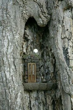 This is what I imagine my fairy doors should be used for. Fairy Door -High in a notch of the tree Fairy Garden Houses, Gnome Garden, Garden Art, Fairy Gardens, Miniature Gardens, Fairy Tree Houses, Garden Design, Fairies In The Garden, Forest Garden