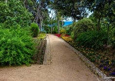 Jardín botánico de Cap Roig - Cami jardi