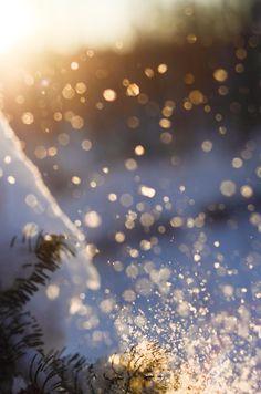 Snow Bokeh