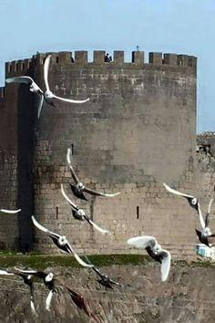 Diyarbakır  surları Türkiye The Kurds, Castle Wall, Garden Of Eden, Kurdistan, The Province, Stone Carving, Geography, Istanbul, Landscape