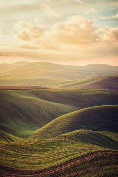 There is a certain serenity in these softly undulating hills as well as in the colors.