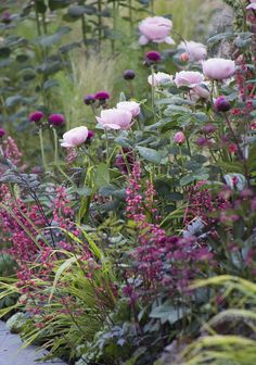 40 inspirations pour un jardin anglais Pink roses purple thistles dark-leaved Actea and Heuchera with variegated grasses. The post 40 inspirations pour un jardin anglais appeared first on Garten. Beautiful Gardens, Beautiful Flowers, Heuchera, Garden Cottage, Colorful Garden, Tropical Garden, Plantation, Dream Garden, Diy Garden