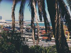 BCN  #barcelona #bcn #spain #europe #dock #port #harbor #beach #sea #palm #boat #ship #steet #medox #medoks #127