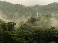 #espaciohonduras Parque Nacional Pico Bonito