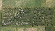 Signs of Fall - Linder Farms Corn Maze (Meridian, ID)