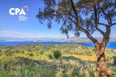 Corfu Island, Corfu Greece, Land For Sale, Sea, Mountains, Nature, Travel, Naturaleza, Trips