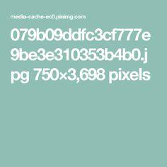 079b09ddfc3cf777e9be3e310353b4b0.jpg 750×3,698 pixels