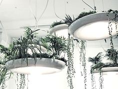 Babylon Light Fixture by Object Interface // a plantable light fixture, absolutely epic! Plant Lighting, Outdoor Lighting, Sky Garden, Home And Garden, Decoration Plante, Grow Lights, Hanging Lights, Indoor Garden, Pendant Lamp