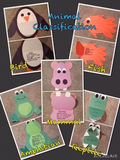 This is a fun way to teach animal classification.  Your students will remember the traits of a bird, reptile, amphibian, fish, and mammal!