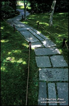 stepping stones through the shady moss gardens