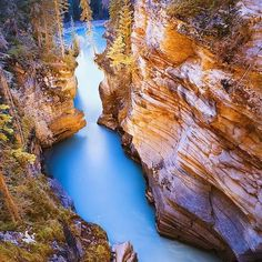 Athabasca Falls At Dusk, Jasper, Alberta, Canada. The Athabasca Falls at Dusk in Canada are one of the most beautiful falls in the Rocky Mountains. These are 30 km towards the south of town site of Japer. Beautiful Places In The World, Places Around The World, Oh The Places You'll Go, Places To Travel, Places To Visit, Around The Worlds, Amazing Places, Travel Destinations, Travel Souvenirs